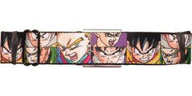 Dragon Ball Z Heroes Boxes Seatbelt Belt