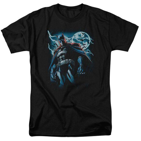 Batman Stormy Knight Short Sleeve Adult T-Shirt