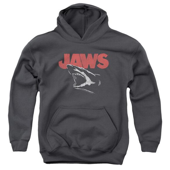Jaws Cracked Jaw Youth Pull Over Hoodie