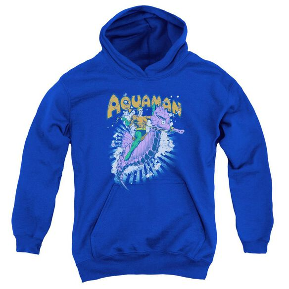 Dc Ride Free Youth Pull Over Hoodie Royal
