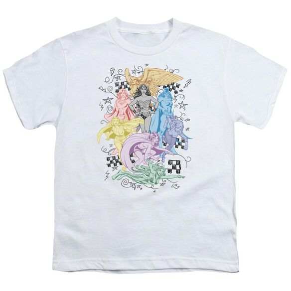 Dc Super Short Sleeve Youth T-Shirt