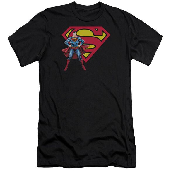 Superman Superman & Logo Premuim Canvas Adult Slim Fit