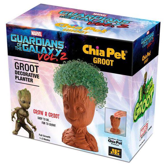 Groot Chia Pet
