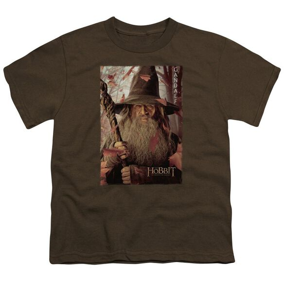 The Hobbit Galdalf Poster Short Sleeve Youth T-Shirt