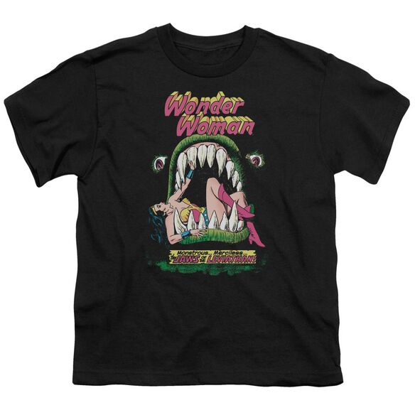 Dc Jaws Short Sleeve Youth T-Shirt