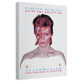 David Bowie Aladdin Sane Canvas Wall Art With Back Board