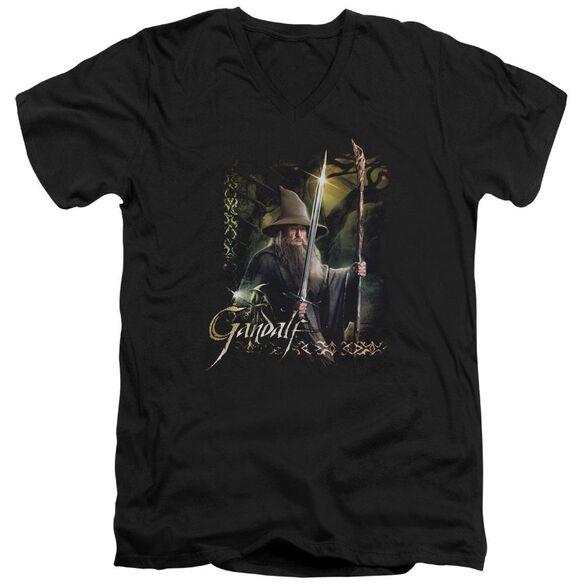 Hobbit Sword And Staff Short Sleeve Adult V Neck T-Shirt