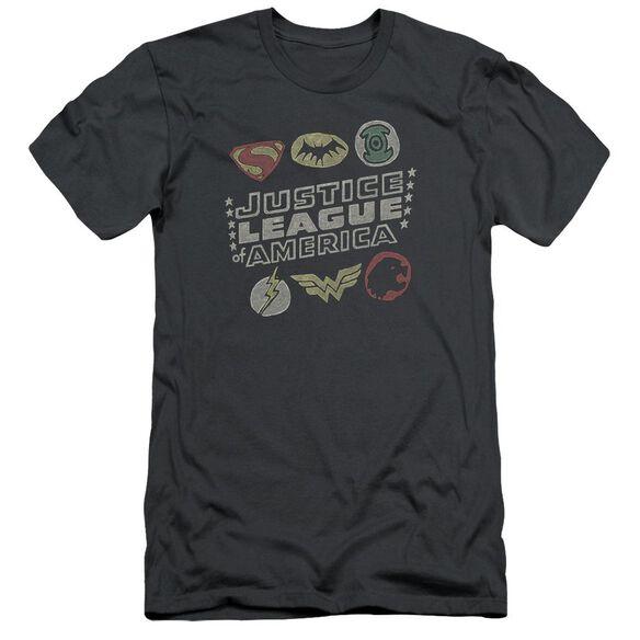 Jla Symbols Short Sleeve Adult T-Shirt