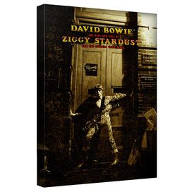 David Bowie Ziggy Stardust Alternate Art Canvas Wall Art With Back Board