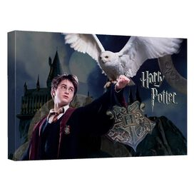 Harry Potter Harry And Hedwig Canvas Wall Art With Back Board