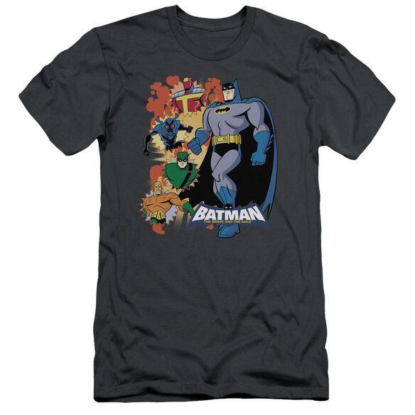 Batman Bb Batman & Friends Short Sleeve Adult T-Shirt