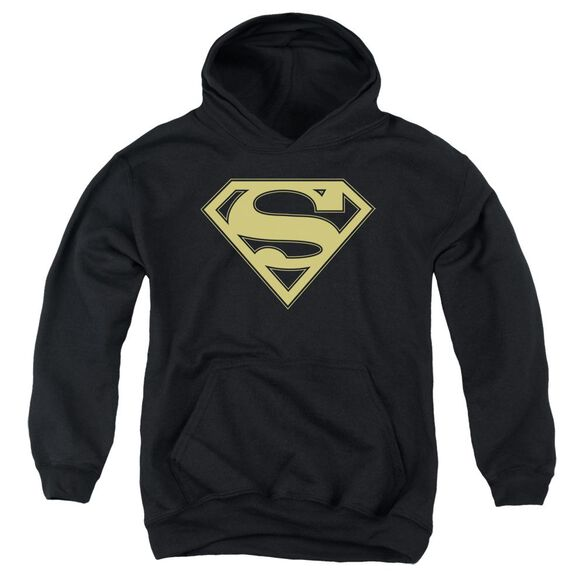 Superman Gold & Shield Youth Pull Over Hoodie