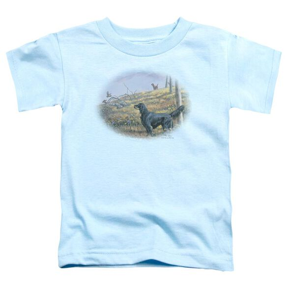 Wildlife Looking Back Short Sleeve Toddler Tee Light Blue T-Shirt