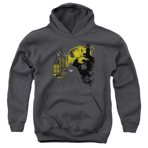Batman The Dark City Youth Pull Over Hoodie