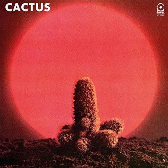 Cactus (Hol)