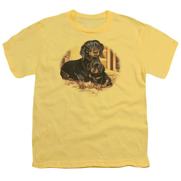 Wildlife Picture Perfect Dachshunds Short Sleeve Youth T-Shirt
