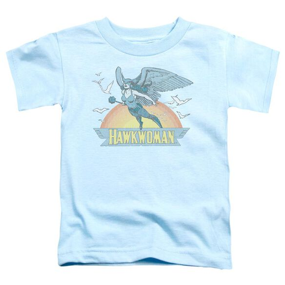 Dc Hawkwoman Short Sleeve Toddler Tee Light Blue Lg T-Shirt