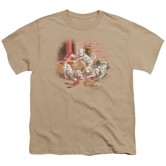 Wildlife Wheres The Fire? Short Sleeve Youth T-Shirt