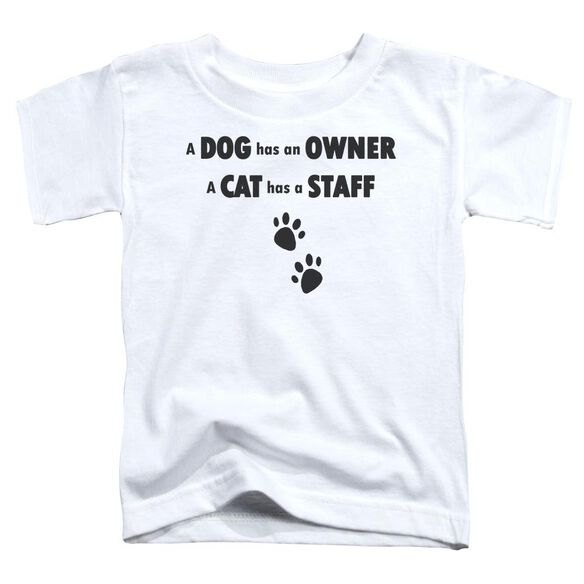 Cat Has A Staff Short Sleeve Toddler Tee White Sm T-Shirt