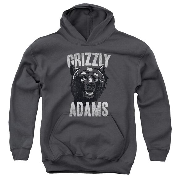 Grizzly Adams Retro Bear Youth Pull Over Hoodie
