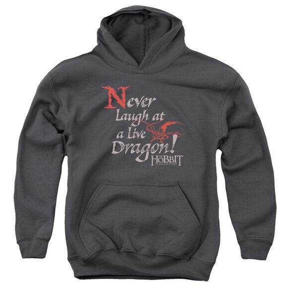 Hobbit Never Laugh Youth Pull Over Hoodie