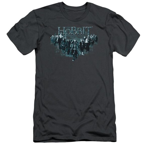 The Hobbit Thorin And Company Short Sleeve Adult T-Shirt
