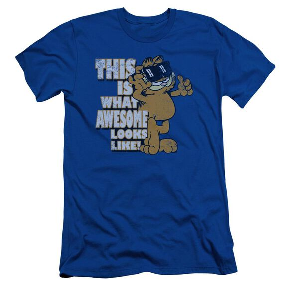 Garfield Awesome Short Sleeve Adult Royal T-Shirt