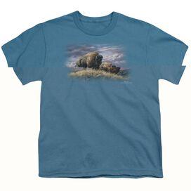 Wildlife Nomads Of The Plains Short Sleeve Youth T-Shirt