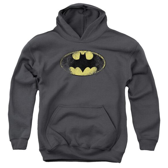 Batman Destroyed Logo Youth Pull Over Hoodie