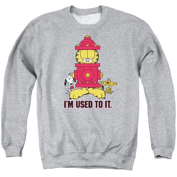 Garfield I'm Used To It - Adult Crewneck Sweatshirt - Athletic Heather