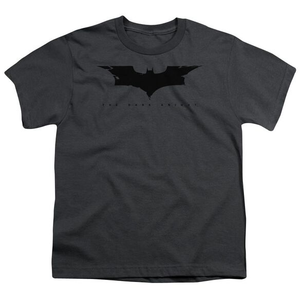 Dark Knight Cracked Bat Logo Short Sleeve Youth T-Shirt