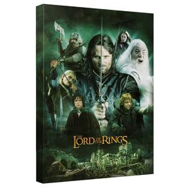 Lord Of The Rings Hero Group Quickpro Artwrap Back Board