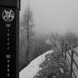 Vardan - Winter Woods