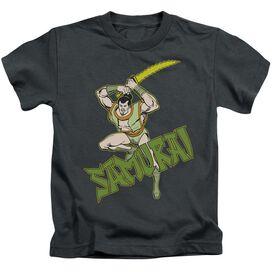 Dc Samurai Short Sleeve Juvenile Charcoal T-Shirt