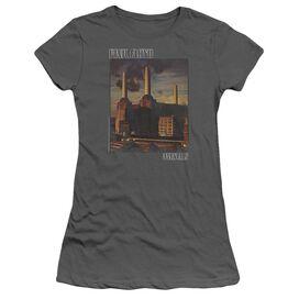 Pink Floyd Faded Animals Short Sleeve Junior Sheer T-Shirt