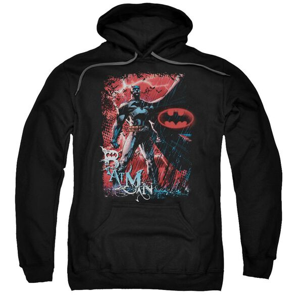 Batman Gotham Reign Adult Pull Over Hoodie