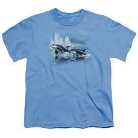 Wildlife Glaciers Edge Orcas Short Sleeve Youth Carolina T-Shirt