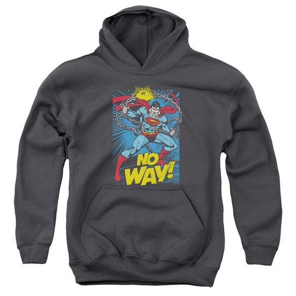 Dc No Way Youth Pull Over Hoodie