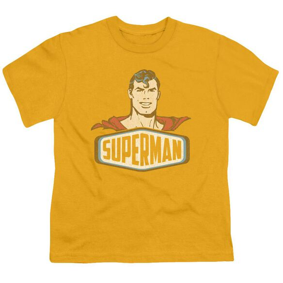 Dco Superman Sign Short Sleeve Youth T-Shirt