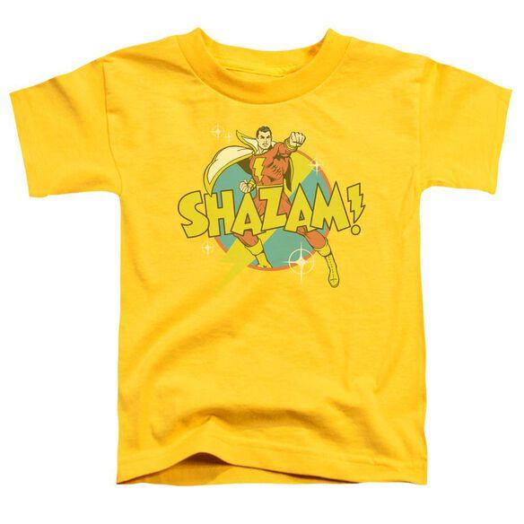 Dc Power Bolt Short Sleeve Toddler Tee Yellow Md T-Shirt