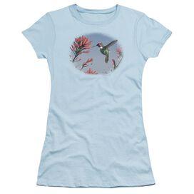 WILDLIFE ANNAS HUMMINGBIRD - S/S JUNIOR SHEER - LIGHT BLUE T-Shirt