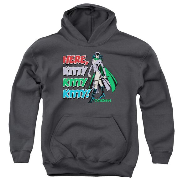 Dc Here Kitty-youth Pull-over Hoodie - Charcoal