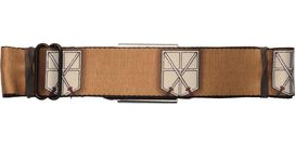 Attack on Titan Trainee Crests Seatbelt Belt