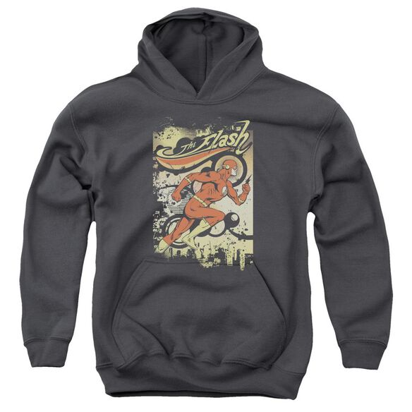 Dc Flash Just Passing Through Youth Pull Over Hoodie