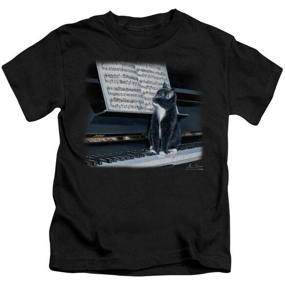 Wildlife Kitten On The Keys Short Sleeve Juvenile Black T-Shirt