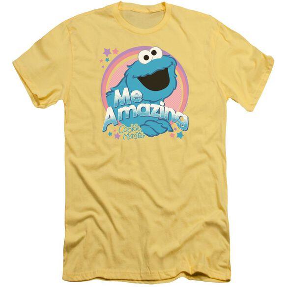 Sesame Street Me Amazing Premuim Canvas Adult Slim Fit