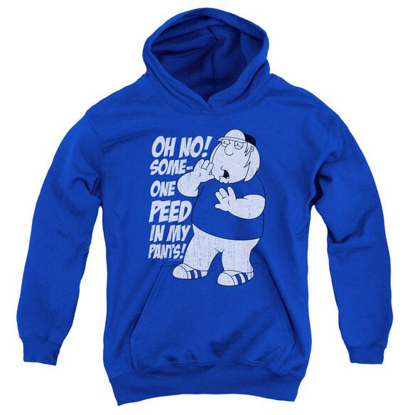 Family Guy In My Pants Youth Pull Over Hoodie