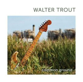 Walter Trout - Common Ground