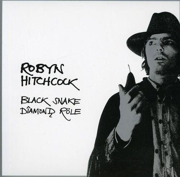 Robyn Hitchcock - Black Snake Diamond Role