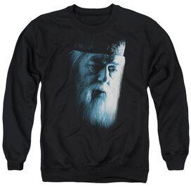 Harry Potter Dumbledore Face-adult